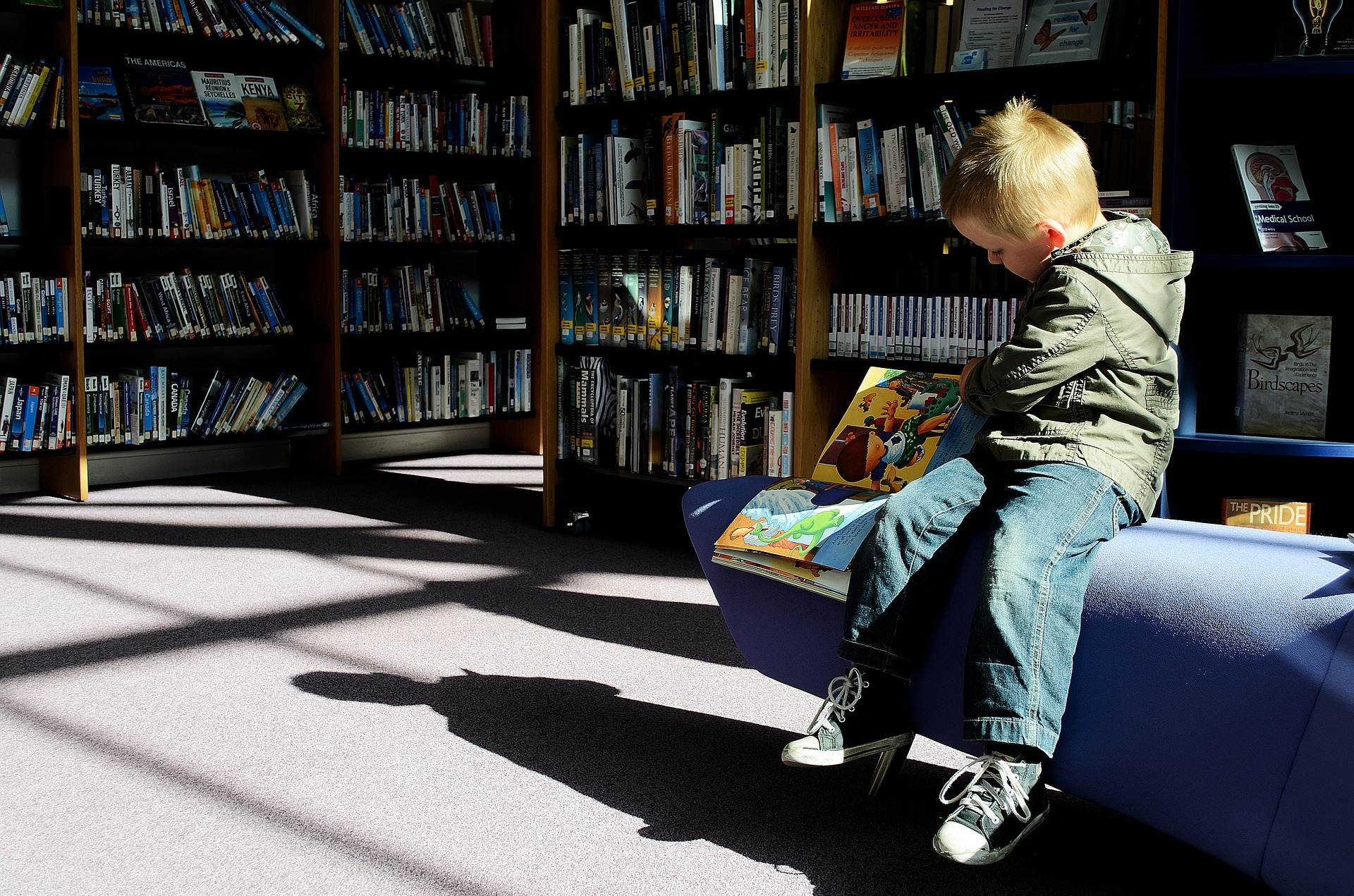 Boy reading books at Thomas Poole Library Nether Stowey